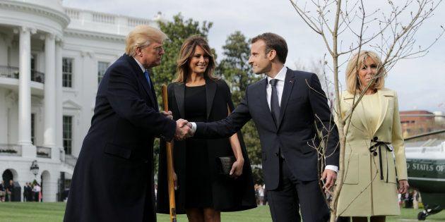 L'arbre de Macron et Trump pourrait attendre jusqu'à 2 ans avant d'être replanté à la Maison