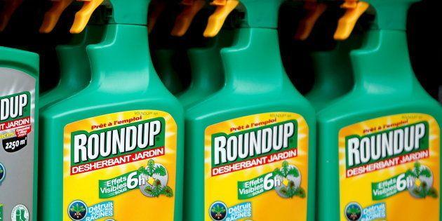 La France votera contre le renouvellement du glyphosate pour 5 ans proposé