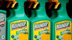 La France votera contre le renouvellement du glyphosate pour 5 ans lors d'une ultime