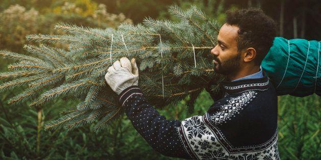 Peut-on acheter trop tôt son sapin de Noël ?