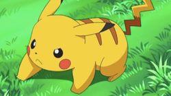 Non, Pikachu ne descend pas de la