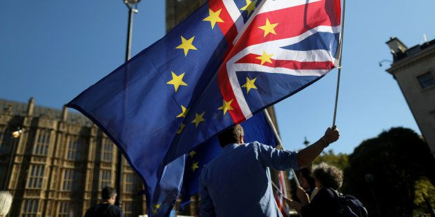 Militant anti-Brexit devant le Parlement à Londres le 8