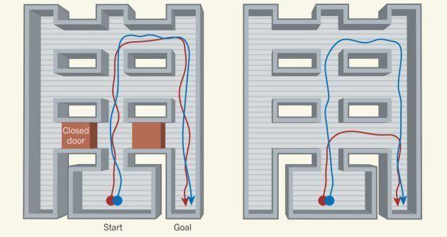 Quand le raccourci est fermé, l'algorithme qui utilise un système similaire aux cellules de grille n'est...