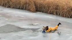 Le sauvetage de ce chien sur la glace aurait pu très mal se
