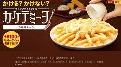 Au Japon, McDonald's vend des frites à la