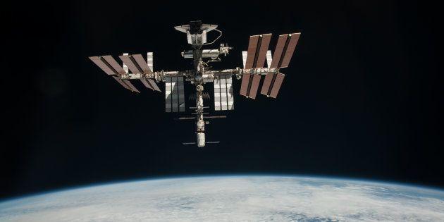 Il y a plus de 1000 espèces sur la Station spatiale