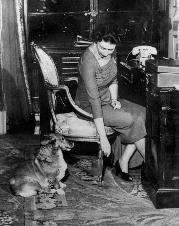 Elizabeth II en 1959. À ses pieds, son chien