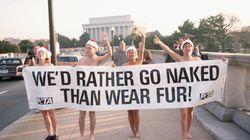 PETA dénonce la hotline mise en place pour les