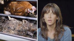 Sophie Marceau interpelle les députés sur ces images chocs d'un élevage de poules dévoilées par