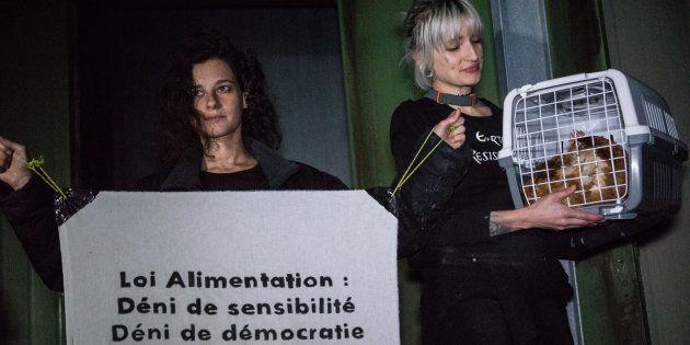 Pourquoi la loi alimentation ne risque pas de satisfaire les défenseurs des animaux (photo: action de...