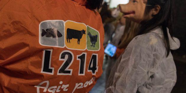 Des militants de L214 manifestant à Nantes le 31 octobre