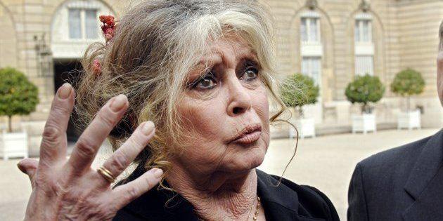 Pour Bardot (ici à l'Élysée en 2007), Macron et son