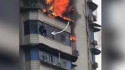 L'incroyable sauvetage de cet homme accroché au 15e étage d'un immeuble en