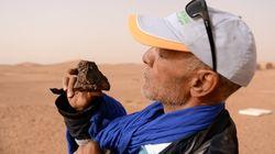 Mieux que chercheur d'or, chasseur de météorite dans le désert