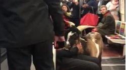 Une chèvre s'est retrouvée dans le métro