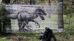 Ce graffeur imagine des œuvres magnifiques en pleine