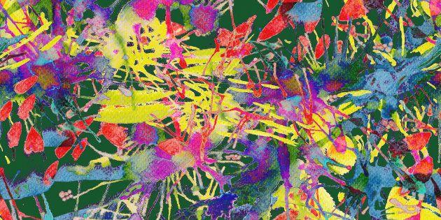 Une simple recherche en ligne m'apprit que ce phénomène avait un nom: la synesthésie.