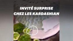 Kylie Jenner a raté ce détail dégoûtant près du gâteau d'anniversaire de sa