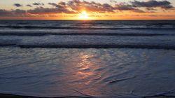 BLOG - Il est crucial de protéger la haute mer pour nous