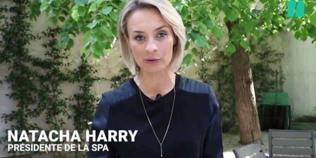 La patronne de la SPA Natacha Harry annonce sa démission, après