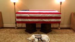 Le chien de George Bush a gardé le sens du