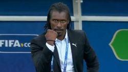 La célébration du sélectionneur sénégalais contre la Pologne vaut le