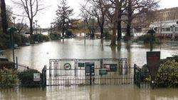 L'impressionnante crue de la Seine vue par les réseaux sociaux, et le pire reste à