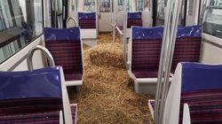 Un métro parisien recouvert de paille pour dénoncer