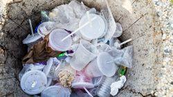 La guerre aux pailles en plastique est