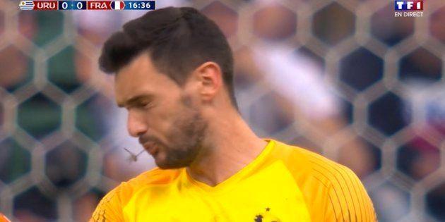 Match France - Uruguay: Cette libellule a parfaitement cadré la bouche d'Hugo
