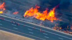 Les images des incendies qui ont détruit des centaines de milliers d'hectares dans l'Ouest