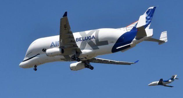 Premier vol du Beluga XL, le nouveau géant de la famille