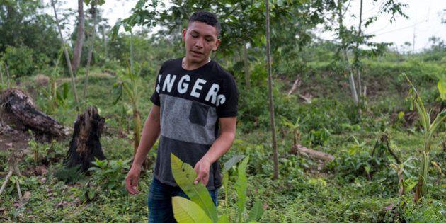 Ramón Bedoya donne une visite guidée de la terre que possède sa famille.