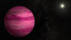 Ces deux exoplanètes sont denses comme de la barbe à