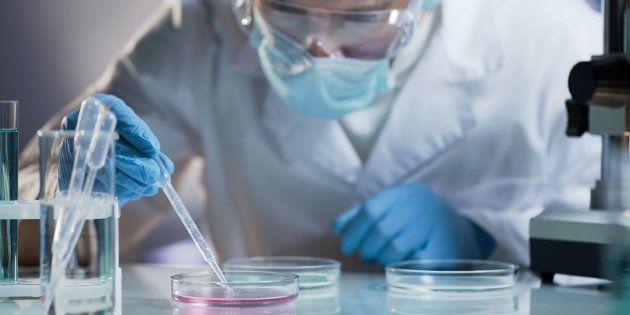 Carcidiag BioTech a créé un kit de détection à faible coût et cherche à l'homologuer pour le