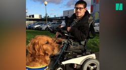 Ce jeune homme handicapé moteur s'est vu privé de son chien assistant à l'entrée d'un
