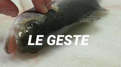 Cette technique ancestrale japonaise pour tuer un poisson change