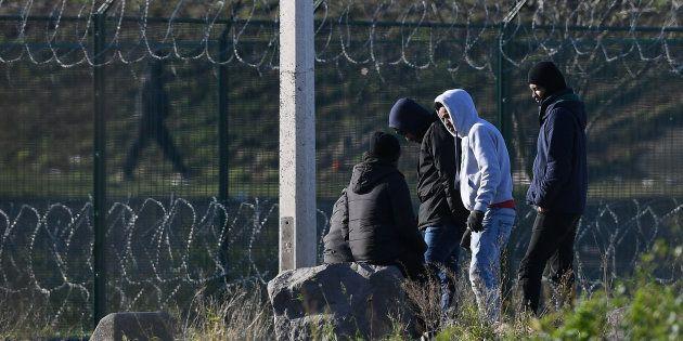 Des migrants à Calais, le 19 janvier