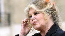 Bardot s'attaque à Hulot, un