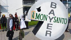 L'action de Bayer, propriétaire de Monsanto, a aussi fait les frais de la sanction