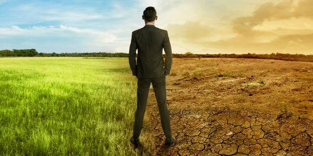 La vie est en train de disparaître sur Terre mais, grâce à l'écologie politique, un autre avenir est