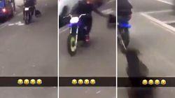 La vidéo d'un chien traîné par un scooter à Bobigny indigne, des associations déposent