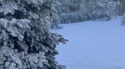 Pour Noël, Kim Kardashian a fait neiger sur la