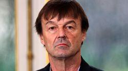 Pascale Mitterrand, à l'origine de la plainte contre Nicolas Hulot,