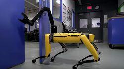 Les derniers robots de Boston Dynamics sont une fois de plus