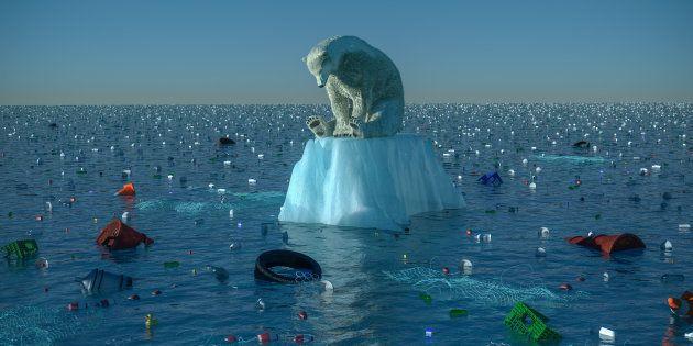 Si une autre espèce causait autant de dégâts que l'humanité, on ferait tout pour s'en débarrasser au...