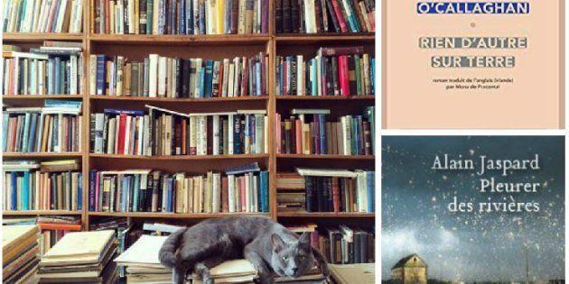 Rentrée littéraire 2018: Pourquoi y a-t-il tant de premiers romans cette