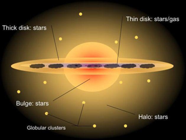 Au centre, le bulbe galactique, qui contient des étoiles et le trou noir supermassif. La plupart des...