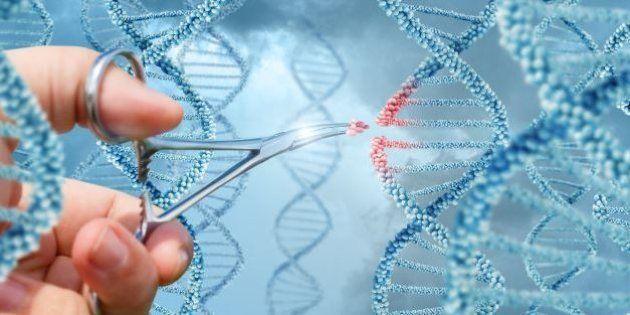 Oubliez la PMA, voici LE débat des États généraux de la bioéthique à