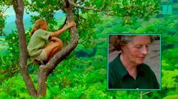 La mère de Jane Goodall ne lui a jamais dit: